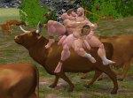 Happy Cowherds